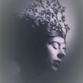 Tiffany Kara Satterfield-Groulx (@teacup_tempest) Avatar