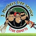 3Monkeys Tree Service (@threemonkeystreeservice) Avatar