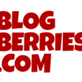BlogBerries (@traveldudenoodles_toys) Avatar