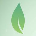 Donnelly Energy (@donnellyenergy) Avatar