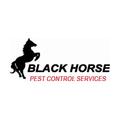 Black Horse Pest Control Company (@blackhorsepestcontrol) Avatar