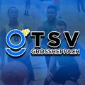 TSV Grossheppach (@grossheppach) Avatar
