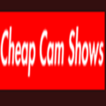 cheapcamshows (@cheapcamshows1) Avatar