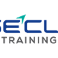 WiseClick Training (@wiseclicktrainingau) Avatar