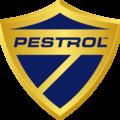Pestrol (@pestrolny) Avatar