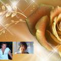 Mr Andrew Gibb and Miss Susan Ansley IN LIFE ONLY (@mrgibbandmissansley) Avatar