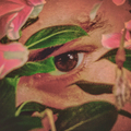 Matías (@cazavampiros) Avatar