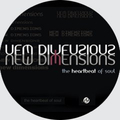New imensions (@newdimensions) Avatar