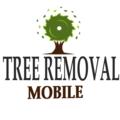 Tree Removal Mobile Al (@treeremovalmobileal) Avatar