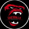 Guerrilla Insights (@guerrilla) Avatar