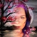 @juliagoolia2019 Avatar