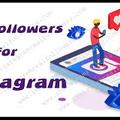 free likes for instagram (@instagramfreefollowers) Avatar