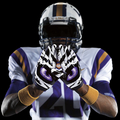 LSU Football (@lsutigersfbgame) Avatar