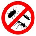 Cockroach Control (@cockroachcont) Avatar
