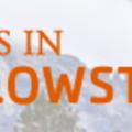 Tours in Yellowstone (@toursyellowstone) Avatar