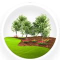 DFW Gardening & Landscaping (@dfwgardening) Avatar