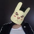 Miss Bunn (@yellowsadtiger) Avatar