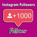 Buy Instagram Followers (@rabiyaali1) Avatar