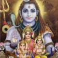 Rihan Shastri (@rihanshastri1) Avatar