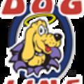 Dog Fe (@dogfence) Avatar