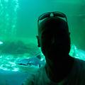 John Uttley (@johnuttley) Avatar