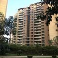 Residential Properties For Rent In Gurgaon  (@janvi4sure) Avatar