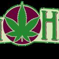 Green Health Eugene (@greenhealtheugene) Avatar