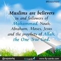 What Is Islam?  (@islam1453) Avatar