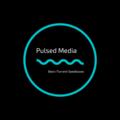 Pulsed Media (@pulsedmedia) Avatar