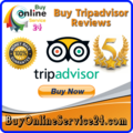 Buy TripAdvisor Reviews (@buyonlineservice243) Avatar