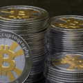 Buy bitcoin in Nottingham (@smartbitcoin9) Avatar