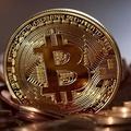 обмен биткоин на сбербанк (@bitcoinsberbank) Avatar