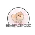 (@bearfacepomz) Avatar