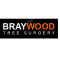 Braywood Tree Surgery  (@braywoodtreesurgeryltd) Avatar