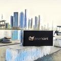 Shop Online Kuwait (@desertcartkw) Avatar