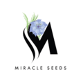 Miracle Seeds (@miracleseeds) Avatar
