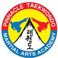 Pinacle Martial Arts Academy Sydney (@pinnaclemartialarts) Avatar