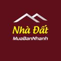 Nhà đất Quy Nhơn Bình Định (@nhadatquynhonbinhdinh) Avatar