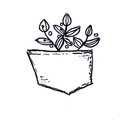 Eco-friendly, Pocket-friendly (@ecopocket) Avatar