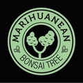 Marihuanean Bonsai Tree (@marihuaneanbonsaitree) Avatar