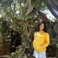 lun (@lunanguyet) Avatar