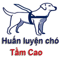 Trung Đức (@huanluyenchotamcao) Avatar