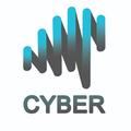 cyberneuro (@amirhosseinmrd) Avatar