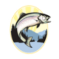 Salmon Club (@salmon_club) Avatar