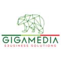 GigaMedia ebusiness solutions (@gigamediaebusinesssolutions) Avatar