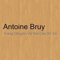 Antoine Bruy (@antoinebruy) Avatar