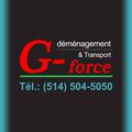 Déménagement & Transport G-Force (@demenagementettransportgforce) Avatar