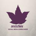 invdown (@invdown) Avatar