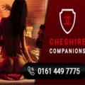 Cheshire Companions (@cheshirecompan) Avatar