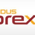 Indusforex (@indusforex) Avatar